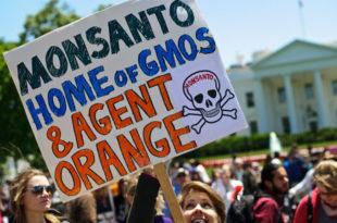 """Стотине хиљада људи у 400 градова широм света протестовали против """"Монсанта"""" и ГМО"""