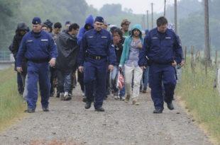 ПРОБЛЕМ СА МИГРАНТИМА: Мађари шаљу граничаре на српско-македонску границу