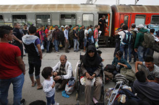 Само у мају у Србију је стигло 8.000 миграната док азил тражи скоро 60.000!