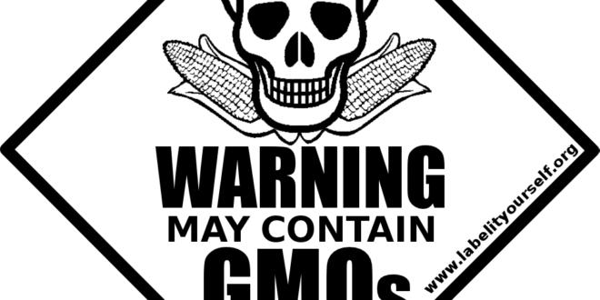 ПАЖЊА: Трују Србију ГМО усевима – од 49 узорака соје 45 је ГМО!
