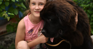 Девојчица писала Путину да нема новца да купи пса, а ево шта је он урадио 8