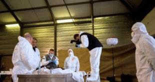 У Борчи пронађен распаднут леш немачког шпијуна! 12