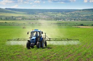 Колико је храна коју једемо затрована пестицидима (2): Отровна репа убила кера