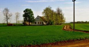 ХИТ У СРБИЈИ - Дају паре да купите сеоску кућу са окућницом 11