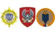 Стојановић: Тајне службе су ван контроле