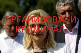Преокрет у афери Златибор: Министарка Михајловић одустала од пљачке државне имовине