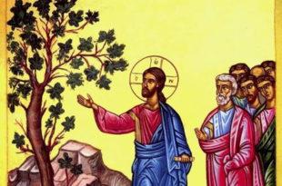 65.9.2. ЈЕВАНЂЕЉЕ по Матеју, зачало 84