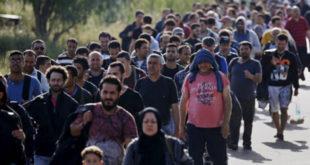 Упозорење немачког министра Зехофера: Опасност од новог избегличког таласа 5