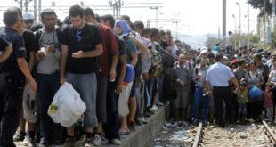 Мигранти надиру, Европљани се свађају 11