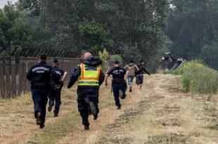 После пандемије, хиљаде миграната опет на српско-мађарској граници