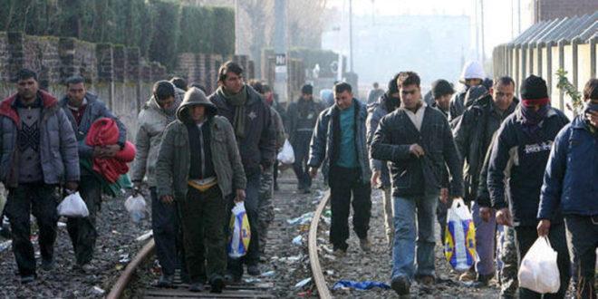 БРИТАНЦИ: Мигранти су претња по животни стандард ЕУ! Зато ваљда од Србије хоћете да направите концетрациони логор