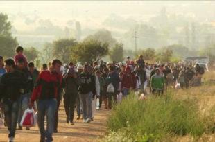 Избегличка криза – како смо увучени у минско поље 12