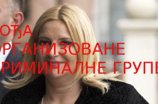Ухапсите Зорану Михајловић због организованог криминала и корупције!
