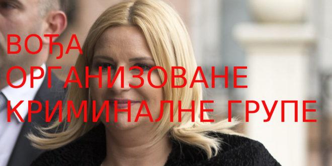 Зорана Михајловић беспризорно лаже! Штета по општи интерес и државу настала њеном криминалном одлуком мери се милијардама евра 1