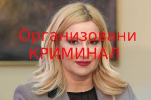 УХАПСИТЕ ЛОПИНУ! Зорана Михајловић ухваћена у крађи 2.318 хекатара земље враћа читав предмет на поновни поступак?!