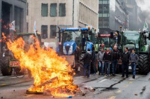 Хаос на улицама Брисела: Трактори, ватра, јаја и водени топови 6