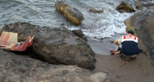 """БОЛЕСНО! Тело малог сиријског дечака Ајлана који се удавио Турци су пребацили како би западни репортери имали """"боље фотографије"""" 7"""