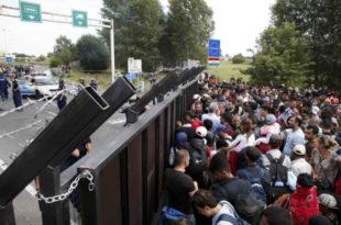 Мигранти поново запоседају Хоргош