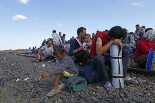 Мађарска: Избеглице пристижу, прихватни центри пуни
