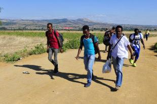 На улаз у Србију чека 175.000 миграната!