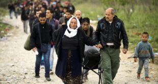 Из Грчке у Македонију за 24 сата ушло око 10.000 миграната 4