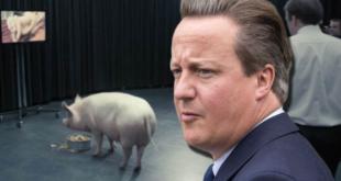 Дејвид Камерон и свињска глава британске елите 12