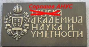 Наопаки Срби или Шта ће Србима непријатељи кад имају себе – пише Илија Петровић 8