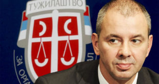 Вучићев кум Никола Петровић и његова организована банда криминалаца хара Србијом 8