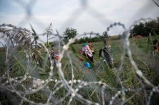 Аустрија: Постављена жица на граници са Словенијом