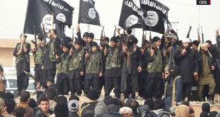 ЕУ и НАТО су од Албаније и Косова и Метохије направили највеће регрутне центре и базе радикалног ислама у Европи 8