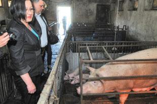 Министарка Богосављевић: Сељаци, више да радите! 1