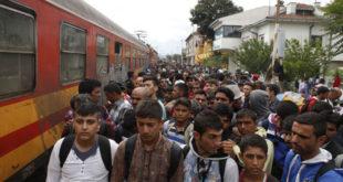 Мигранти разарају ЕУ 11
