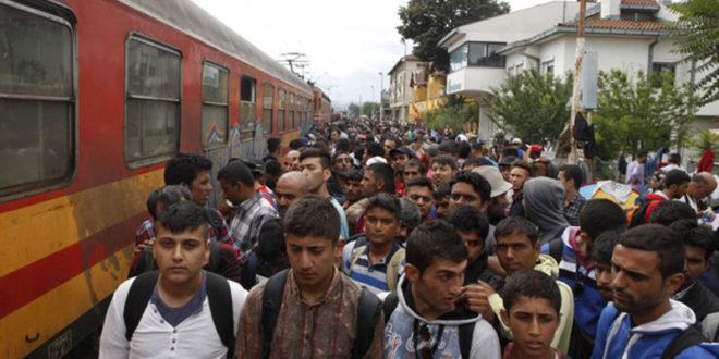 Европске владе под притиском да приме још више избеглица! 1