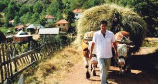 Пољопривредно становништво све старије, просечно газдинство 4,5 хектара 10