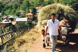 Пољопривредно становништво све старије, просечно газдинство 4,5 хектара