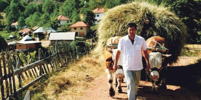 Пољопривредно становништво све старије, просечно газдинство 4,5 хектара 1