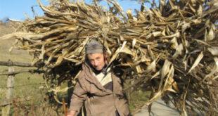 У Србији највише пољопривредника старијих од 65 година