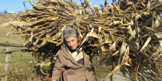 У Србији највише пољопривредника старијих од 65 година 1