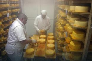 Увоз вишка из ЕУ уништава домаћи сир