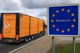 """ЕУ КАО """"КУЛА ОД КАРАТА"""": И Данска прети да ће напустити ЕУ!"""