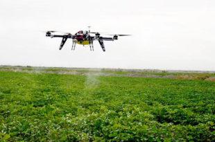 Зашто је Србија остала ускраћена за десет милијарди евра кинеских инвестиција у аграр?