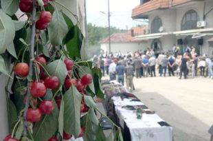 Вишња оживљава село Васиљ