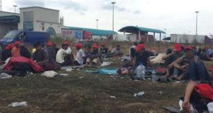 Мигранти масовно траже азил у Србији 7