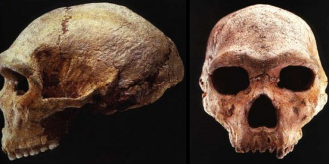 Невероватно откриће грчког антрополога је најстрожија тајна: Историја људске врсте је потпуна лаж