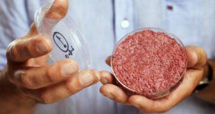 ЕКСКЛУЗИВНО: Срби годишње поједу око 7,5 тона ГМО меса (видео) 8
