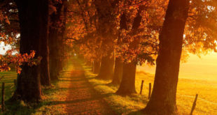 Први дан јесени, а са њом захлађење и пљускови