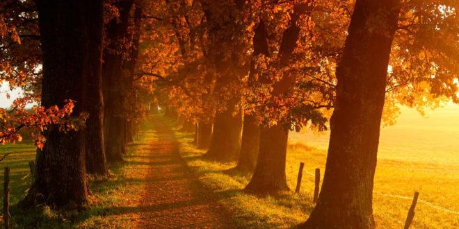 Данас почиње јесен