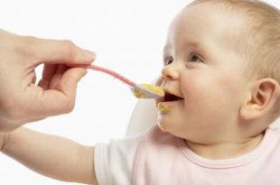 Каматица: Кашица за бебе у Србији 200, у Немачкој 90 динара 8