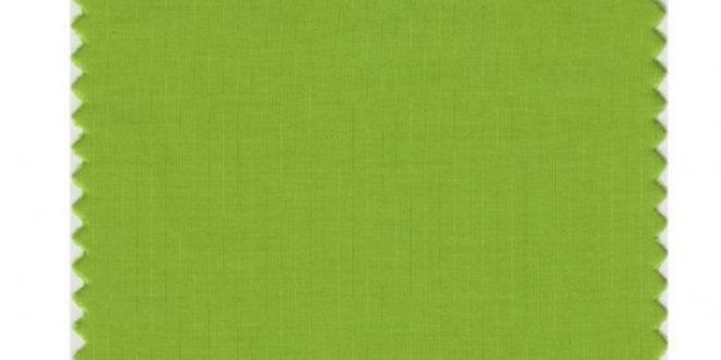 Ово је боја која ће обележити 2017. годину