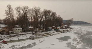 Живе на Дунаву данима одсечени ледом од света (видео) 3